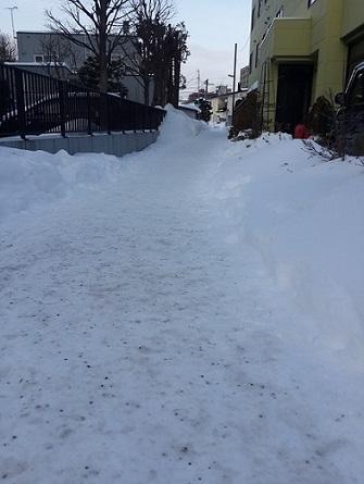 snow -small.jpg